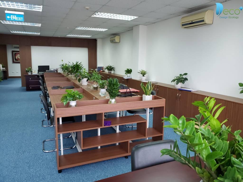 Tư vấn thiết kế văn phòng - Không gian làm việc xanh